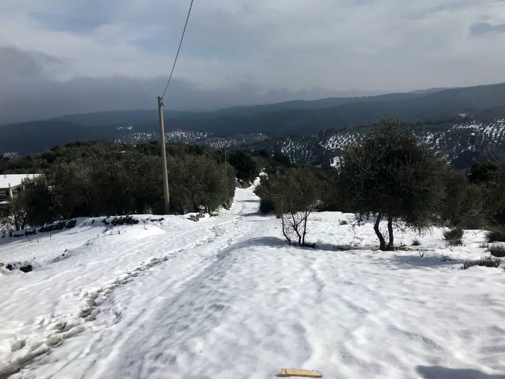 neve strade di campagna a vico-2
