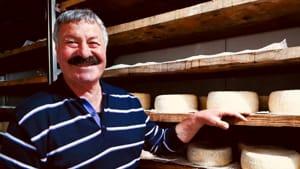 Biccari Domenico Ioanna e la sua produzione di formaggi apprezzata in tutto il mondo-2