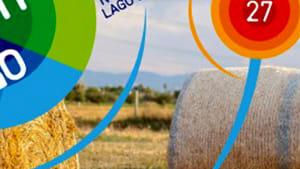 """#weareinpaglia: torna il format di co-realizzazione dell'anfiteatro del grano ideato da vazapp, che quest'anno inaugurerà la manifestazione """"mille di queste notti 2019"""" sul lago di varano.-5"""