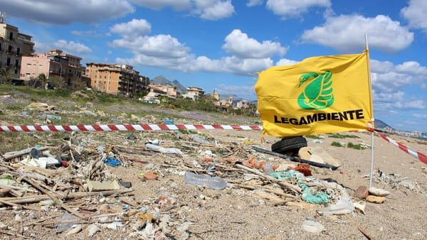 beach litter (6)-2