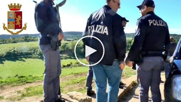 [VIDEO] Azienda in odor di mafia, intervento della polizia tra bovini e bufalini: tolta la gestione alla moglie di Quitadamo