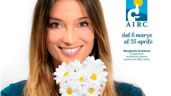 """Anche a Foggia """"Margherita per Airc"""", un fiore per la ricerca"""