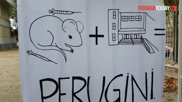 """Infiltrazioni nelle aule, topi nei corridoi e siringhe nel cortile. Gli studenti del Perugini scioperano: """"Vogliamo più igiene e sicurezza"""""""
