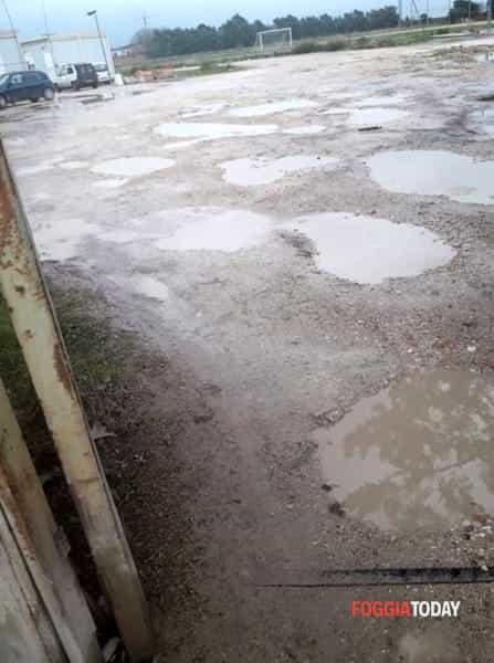 FOTO - Container del Campo degli Ulivi a Foggia 1